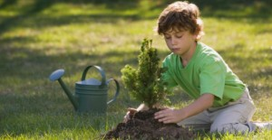 giornata_nazionale_degli_alberi